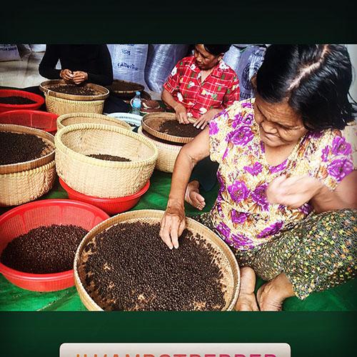 Kampot pepper の故郷Vol.4
